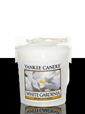 Bougie votive Gardenia Blanc 4,6x4,8cm