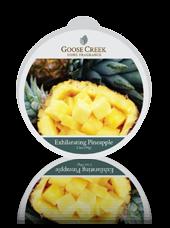 Cire parfumée Ananas